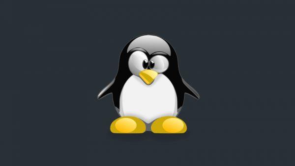 linux devops manage users